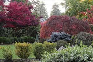 Autumn garden in Burnaby BC