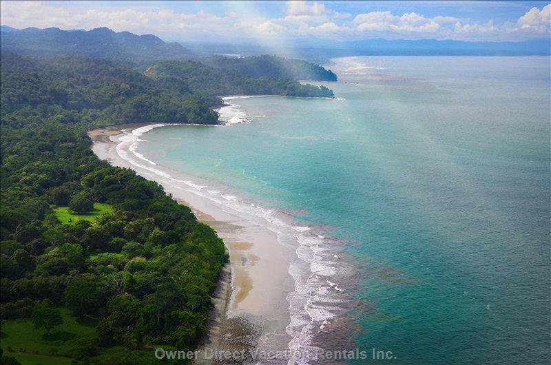Osa Peninsula, Puntarenas / 235128