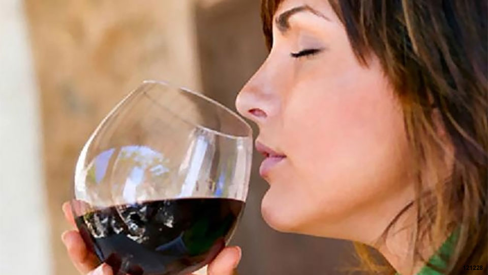 Enjoy a Wine Festival during your Fall Holiday