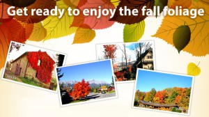 Top 5 destinations to view fall foliage in North America