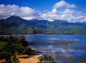 Lovely Sandpiper 2BR Condo - Sleeps 6 - DSL - Ocean View, Princeville, Kauai - Unit - ID 9134
