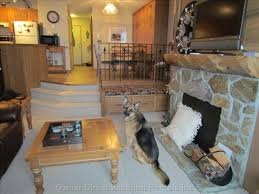 Dog Friendly Big White Condo
