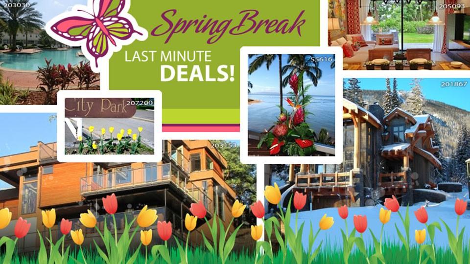 Spring Break Last Minute Deals