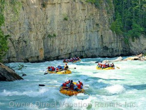 Go river rafting on the Kicking Horse river #9410