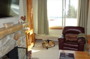 Yes, we're dog friendly at Big White Ski Resort