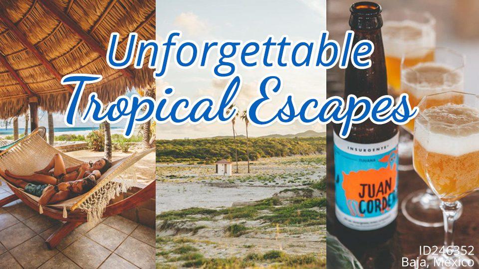 Unforgettable Tropical Escapes