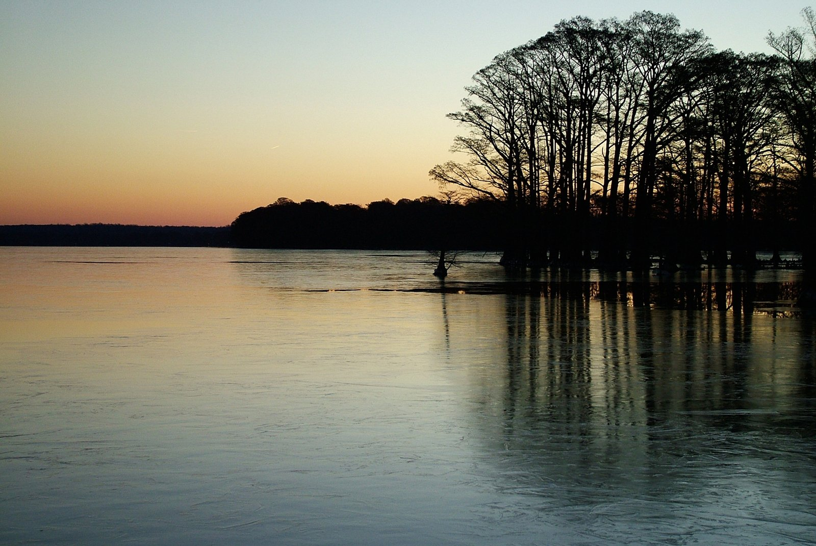 Reelfoot Lake, Tennessee / Ned Horton / FreeImages